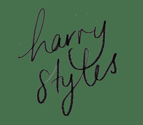 Harry Styles Merch