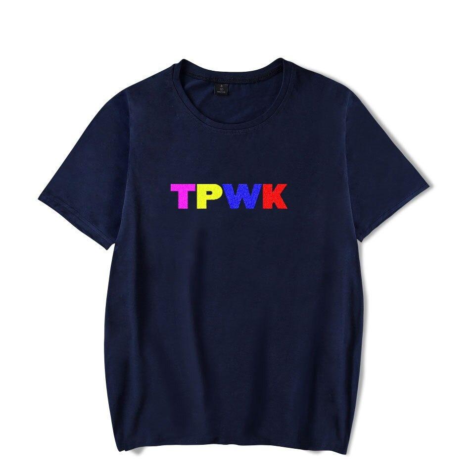 harry styles tpwk t-shirt